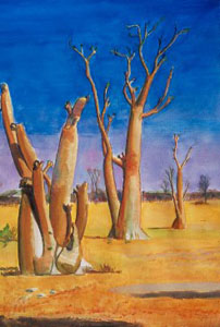 Moringa Trees Etosha National Park, Namibia (landscapes, Watercolor) - Fine Art by Donald G. Vogl, Fort Collins, Colorado