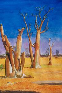 Moringa Trees Etosha National Park, Namibia (landscapes, Watercolor) - Fine Art by Donald G. Vogl, Fort Collins, Colorado