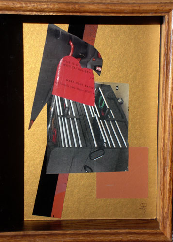 Grey Parrot  (collages animals, Collage) - Fine Art by Donald G. Vogl, Fort Collins, Colorado
