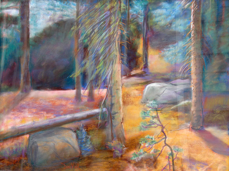 If a Tree Falls South Shore of Bear Lake, Rocky Mountain National Park, Colorado (landscapes, Pastel) - Fine Art by Donald G. Vogl, Fort Collins, Colorado