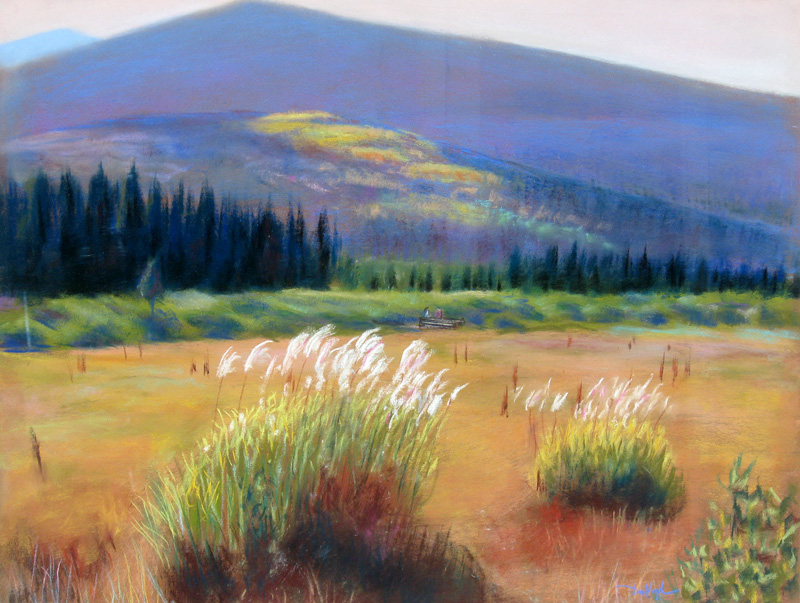 Beaver Meadows Rocky Mountain National Park, Colorado (landscapes, Pastel) - Fine Art by Donald G. Vogl, Fort Collins, Colorado
