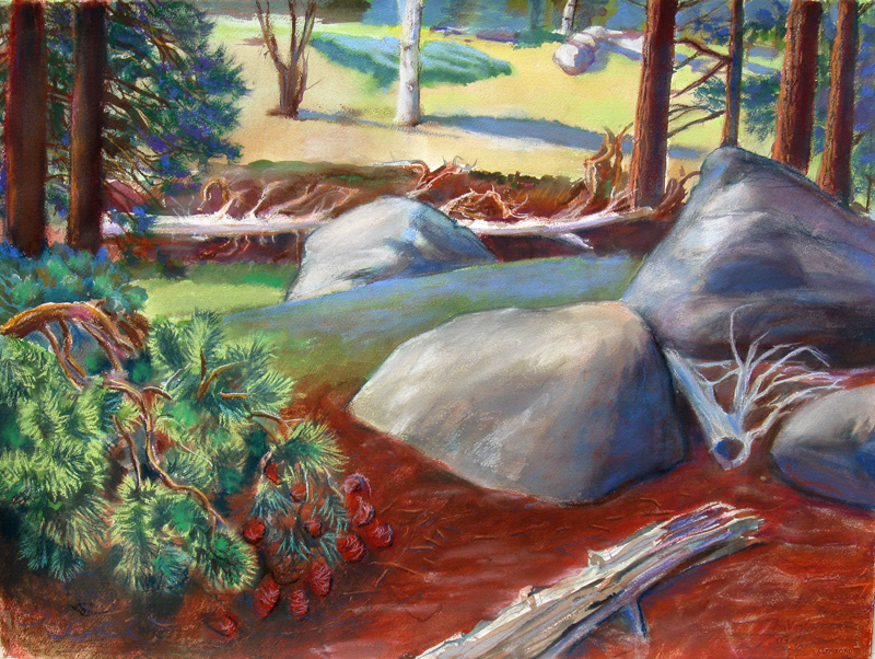 Before Pine Beetles Rocky Mountain National Park, Colorado (landscapes, Mixed Media) - Fine Art by Donald G. Vogl, Fort Collins, Colorado