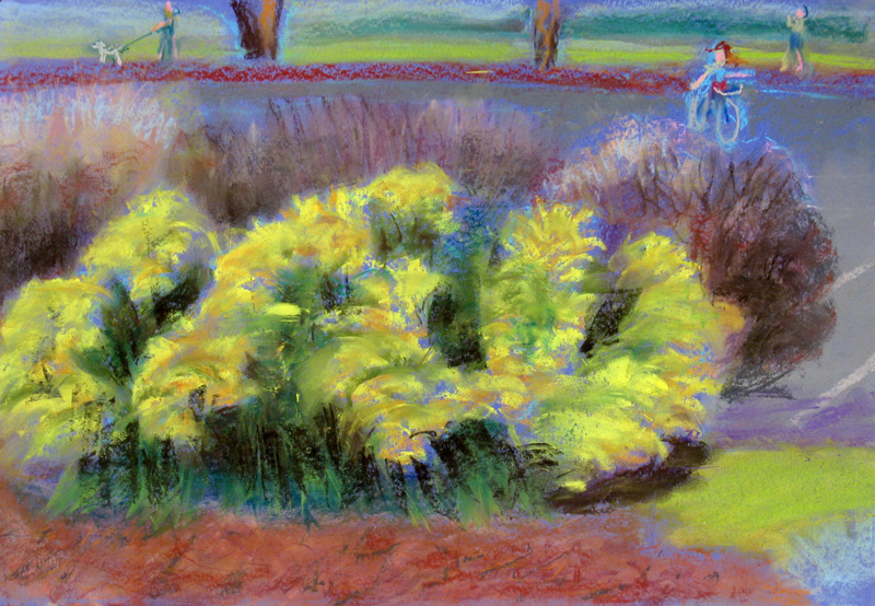Bushes in Bloom  (landscape, Pastel) - Fine Art by Donald G. Vogl, Fort Collins, Colorado