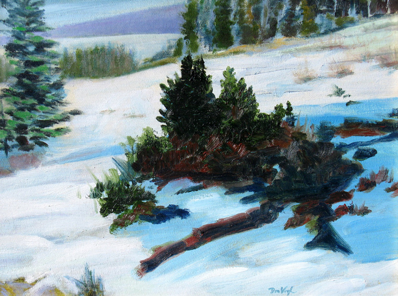 In the Shadows Rocky Mountain National Park, Colorado (landscapes, Oil) - Fine Art by Donald G. Vogl, Fort Collins, Colorado