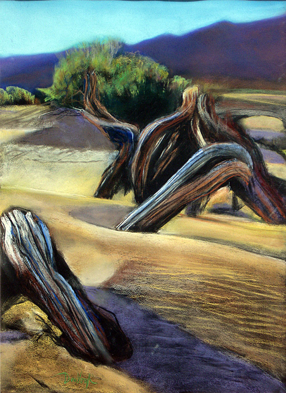 Nevada Sand Nevada (landscapes, Pastel) - Fine Art by Donald G. Vogl, Fort Collins, Colorado
