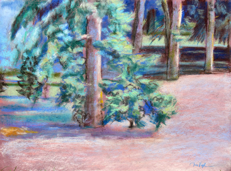 Pines City Park, Fort Collins, Colorado (landscapes, Pastel) - Fine Art by Donald G. Vogl, Fort Collins, Colorado