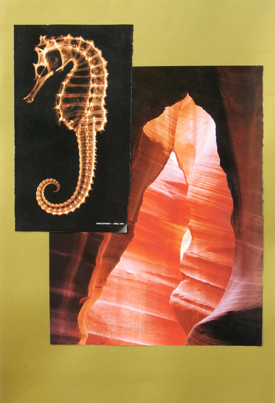 Sea Horse Land Bear  (collages, Collage) - Fine Art by Donald G. Vogl, Fort Collins, Colorado