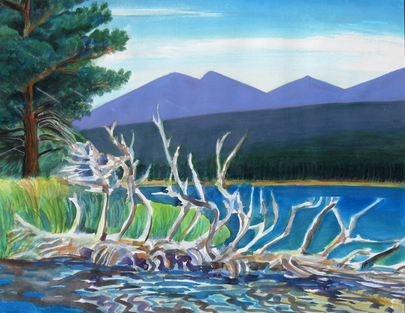 Looking East on Sprague Lake Rocky Mountain National Park, Colorado (landscapes, Watercolor) - Fine Art by Donald G. Vogl, Fort Collins, Colorado