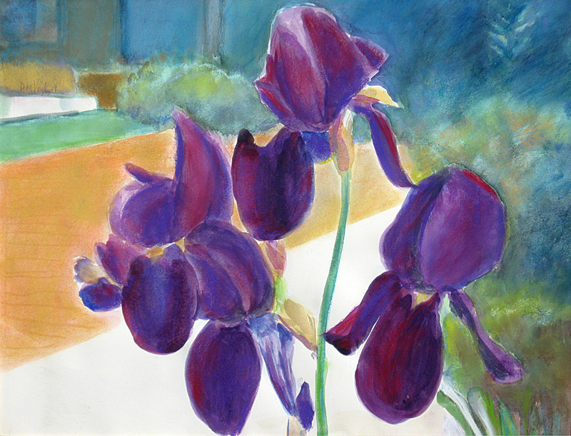 Vivid Purple  (still-lifes, Pastel) - Fine Art by Donald G. Vogl, Fort Collins, Colorado