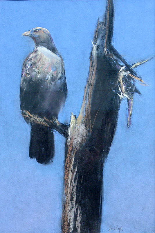 Waiting (Hawk)  (animals, Pastel) - Fine Art by Donald G. Vogl, Fort Collins, Colorado