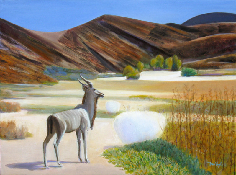 AntelopeNamibia (Oil, animals) - Fine Art by Donald G. Vogl, Fort Collins, Colorado