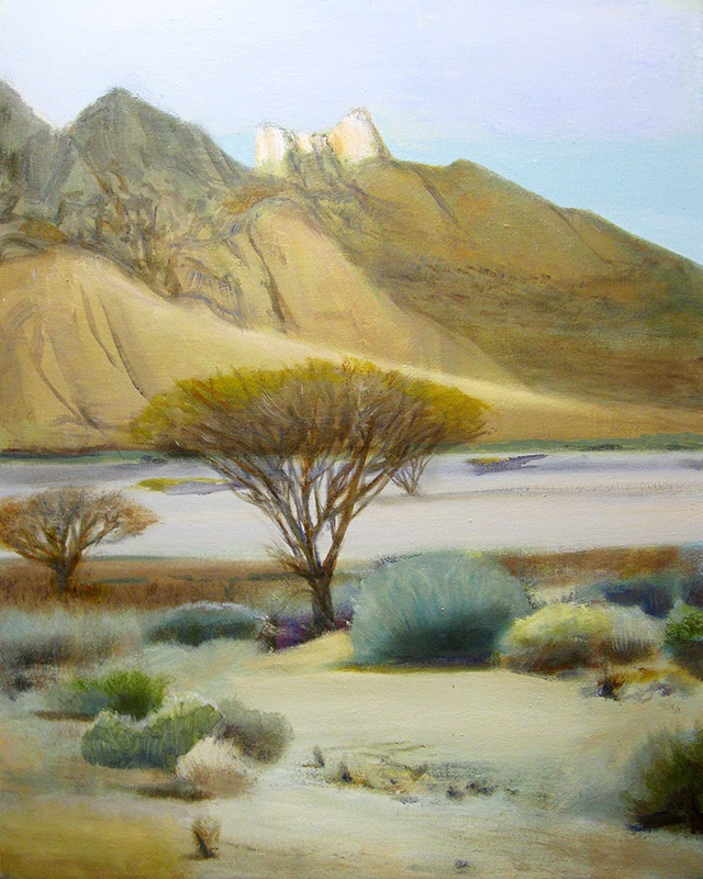Arid NamibiaNamibia (Oil, landscapes) - Fine Art by Donald G. Vogl, Fort Collins, Colorado