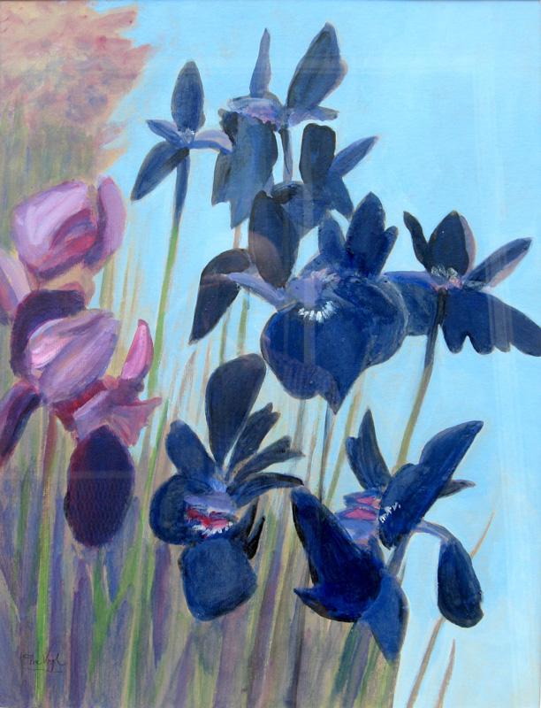 Blue Iris (Watercolor, still lifes) - Fine Art by Donald G. Vogl, Fort Collins, Colorado