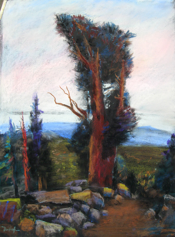 Bristlecone PineColorado (Pastel, landscapes) - Fine Art by Donald G. Vogl, Fort Collins, Colorado