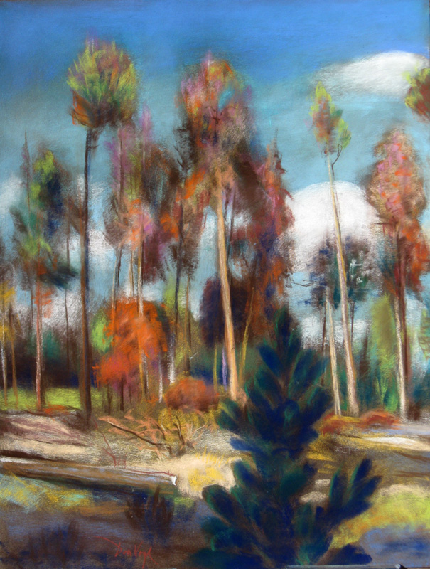 Deciduous and ConiferousColorado (Pastel, landscapes) - Fine Art by Donald G. Vogl, Fort Collins, Colorado