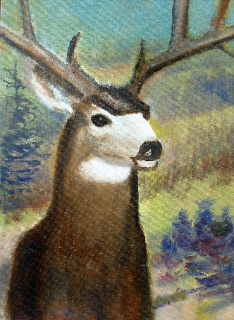 Deer (Oil, animals landscapes) - Fine Art by Donald G. Vogl, Fort Collins, Colorado