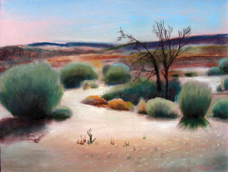 Namib DesertNamibia (Pastel, landscapes) - Fine Art by Donald G. Vogl, Fort Collins, Colorado
